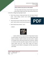 Artikel Mineral Indeks Metamorf