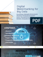 Digital Watermarking for Big Data