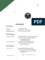 Lebenslauf Muster - Design 11.docx