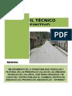 PERFIL DE PISTAS Y VEREDAS LIRIOS.docx