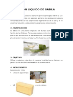 99435090-proyecto-Jabon-liquido-de-sabila.docx