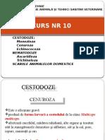 CURS Patologie animala  NR 10  11 si 12.pptx