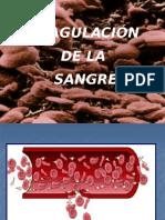 Coagulacion de La Sangre