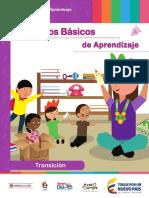 Pi DBA Transición_Septiembre 8
