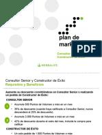 Plan Marketing 3 Senior-Consultant y Constructor-Exito