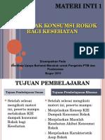 1. Dampak Rokok, Bogor 2015