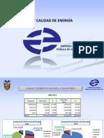 20130606 Eficiencia y Calidad de Energia Eeg