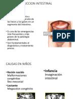 OBSTRUCCION INTESTINAL.pdf
