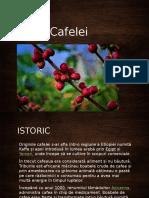 Istoria Cafelei