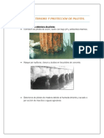 proteccion y deterioro de piltes y pilas.docx
