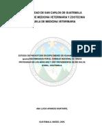 Tesis Parasitisis en Especimenes de Iguana Verde Decomisadas en Guatemala