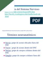 Capitulo 3 Carlson Estructura SNC
