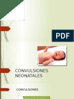 convulsion neonatal.pptx