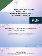 ANOMALIAS CONGENITAS DEL INTESTINO MIO.pptx