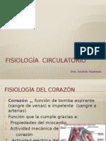 FISIOLOGÍA Circulatorio