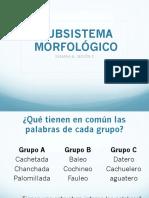 subsistema morfológico