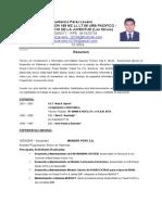 CV Luis Pérez Lévano