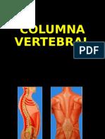 1- Columna Vertebral - Generalidades