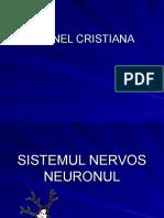 neuronul 1
