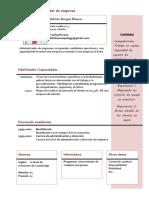 Curriculum Vitae Modelo4b Granate