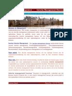 Soorten Interim Management - Meesters in Management -interim projecten