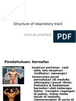 Structure of Respiratory Tract-tadulako 2011clinical Oriented