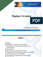 3.6 Pigging - SL (2)