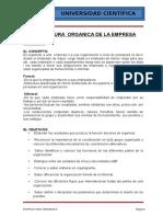 3. Cuerpo Del Informe Estructura Organica
