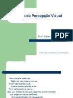Teoria da Percepção visual - aula inaugural