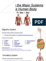 finished  evan   drew human body system