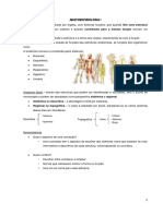 Anatomofisiologia I 1ª Freq