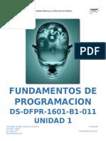 DS_DFPR_U1_A1_RNZI.docx