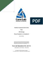 Cromatografias_GAS_Forasteros_1-2.pdf
