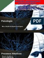 procesos afectivos.pptx