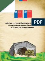 20121109_biomasa y Biogas