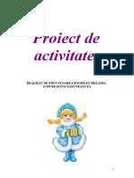 Proiect Formarea Genitivului Substantivelor