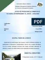 Bologan Stefan Prezentare Teza de Licenta(1)3