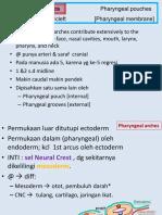 Tumbuh-kembang-GIGI-2013-eps.2.pdf