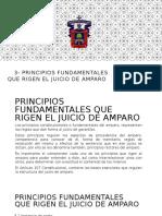 3- Principios Fundamentales Que Rigen El Juicio De amparo