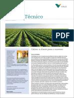 Boletim Tecnico Fertilizantesjaneiro 2016calcio a Chave Para o Sucesso