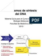 6 Mecanismos de Síntesis Del DNA - 2013 Copy