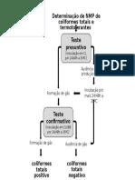 fluxograma NMP
