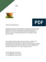 25.Metode de Detoxifiere