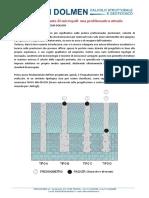 Capacita_portante_di_micropali___una_problematica_attuale_QQWu.pdf