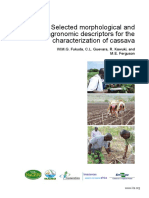 Selected Morphological and AGRONOMIC DESCRIPTORS for the Characterization of Cassava