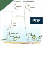 Linie Pentru Babusca Si Linie Pentru Platica -Pescuit