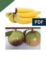 Calendar Fruits