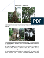 HERITAGE TREES OF THENI DISTRICT.pdf