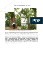 Heritage Trees of Parambikulam Tiger Reserve (PTR)
