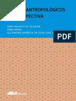 Joao_Pacheco_de_Oliveira_et_al._Org._201.pdf